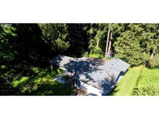 17619 NE 29TH Ave, Ridgefield, WA 98642 (MLS #17028509) :: Cano Real Estate