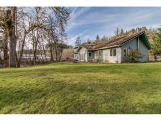 85873 Lorane Hwy, Eugene, OR 97405 (MLS #17057525) :: R&R Properties of Eugene LLC
