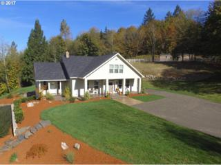 34203 NE 127TH Ave, La Center, WA 98629 (MLS #17082967) :: Cano Real Estate