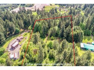 0 NE Bald Peak Rd, Hillsboro, OR 97123 (MLS #17111987) :: Fox Real Estate Group
