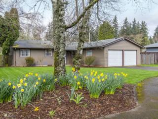 6729 SE 131ST Pl, Portland, OR 97236 (MLS #17118264) :: Change Realty