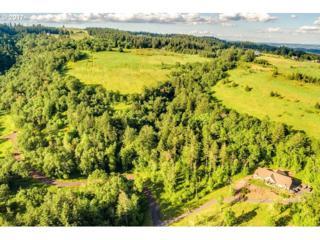 0 NE Wilsonville Rd, Newberg, OR 97132 (MLS #17120594) :: Fox Real Estate Group