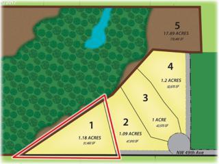 21321 NW 48th Ct, Ridgefield, WA 98642 (MLS #17162834) :: Cano Real Estate