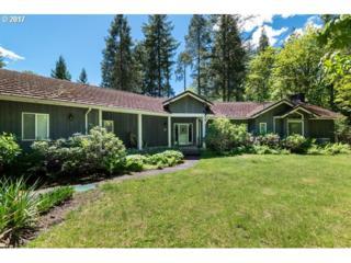 51550 Mckenzie Hwy, Vida, OR 97488 (MLS #17181020) :: R&R Properties of Eugene LLC
