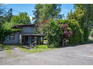 471 Mountainview St, Oregon City, OR 97045 (MLS #17184934) :: Change Realty
