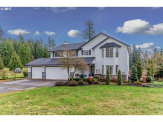 301 NE 408TH Ct, Washougal, WA 98671 (MLS #17240834) :: SellPDX.com