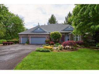 9600 NE Meadow Loop, Newberg, OR 97132 (MLS #17266489) :: Fox Real Estate Group
