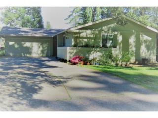 609 NE 132ND Ave, Vancouver, WA 98684 (MLS #17316753) :: Cano Real Estate