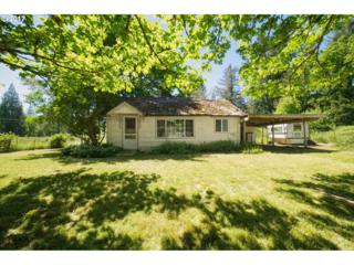 39921 Reuben Leigh Rd, Lowell, OR 97452 (MLS #17328362) :: R&R Properties of Eugene LLC