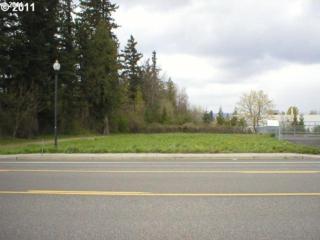 23215 NE Halsey St, Wood Village, OR 97060 (MLS #17338485) :: Change Realty