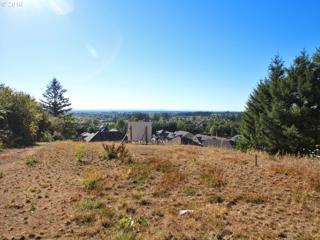 2023 NW 40TH Ave, Camas, WA 98607 (MLS #17372906) :: Cano Real Estate