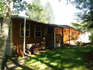 1910 SE Blair Rd, Washougal, WA 98671 (MLS #17406903) :: Portland Real Estate Group