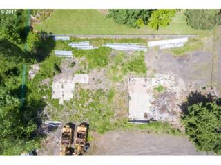 907 SW Bailey Ave, Hillsboro, OR 97123 (MLS #17452176) :: Fox Real Estate Group