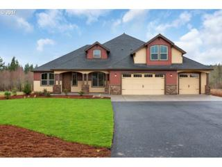 S Team Ct, Oregon City, OR 97045 (MLS #17549939) :: Fox Real Estate Group