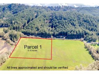 0 Gopher Valley Rd Lot 1, Sheridan, OR 97378 (MLS #17639405) :: Change Realty