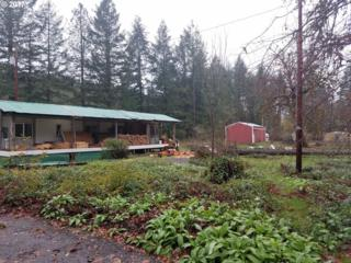 40257 Brice Creek Rd, Dorena, OR 97434 (MLS #17641299) :: R&R Properties of Eugene LLC