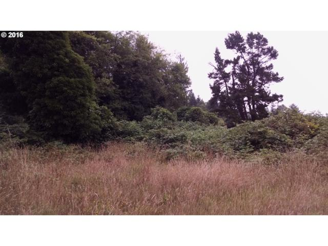 S First St Lot 2, Nehalem, OR 97131 (MLS #16101556) :: Gustavo Group
