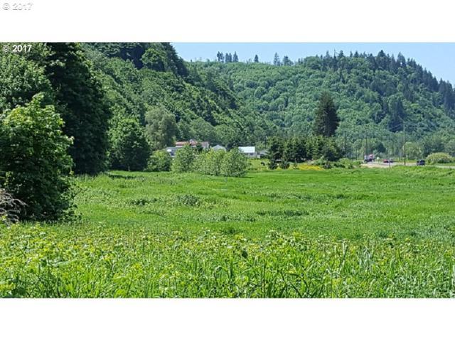 13353 Old Columbia River H, Clatskanie, OR 97016 (MLS #17065660) :: Premiere Property Group LLC