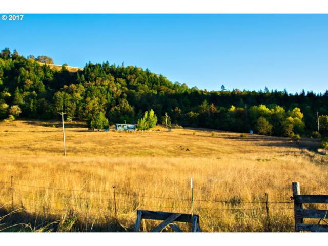 981 Wilbur Cemetery Rd, Wilbur, OR 97494 (MLS #17070348) :: Stellar Realty Northwest