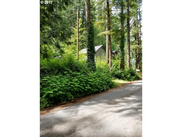 0 NE Cole Witter Rd, Battle Ground, WA 98604 (MLS #17092149) :: The Dale Chumbley Group