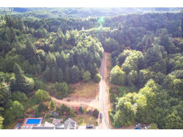 Cherry St, Vernonia, OR 97064 (MLS #17094991) :: Cano Real Estate