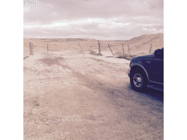Hwy 95, Jordan Valley, OR 97910 (MLS #17100947) :: Cano Real Estate