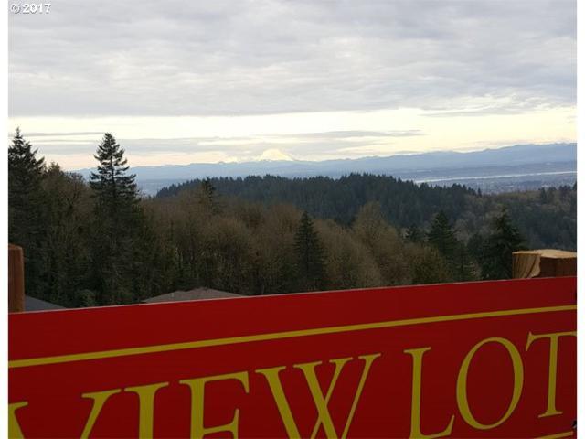 318 NW Skyline Blvd, Portland, OR 97210 (MLS #17130493) :: Stellar Realty Northwest