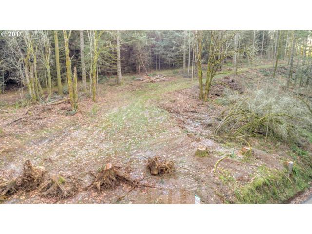 0 SW Holly Hill Rd, Hillsboro, OR 97123 (MLS #17163813) :: TLK Group Properties