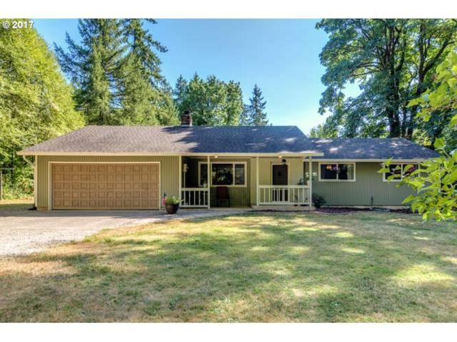 14117 NE 272ND Way, Battle Ground, WA 98604 (MLS #17204511) :: Matin Real Estate