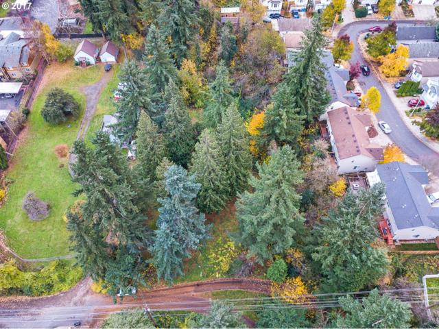 201 NE Newhouse Rd, Vancouver, WA 98663 (MLS #17319014) :: Premiere Property Group LLC