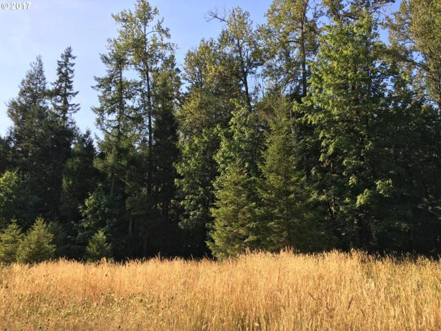Reuben Leigh Rd, Lowell, OR 97452 (MLS #17329646) :: Song Real Estate