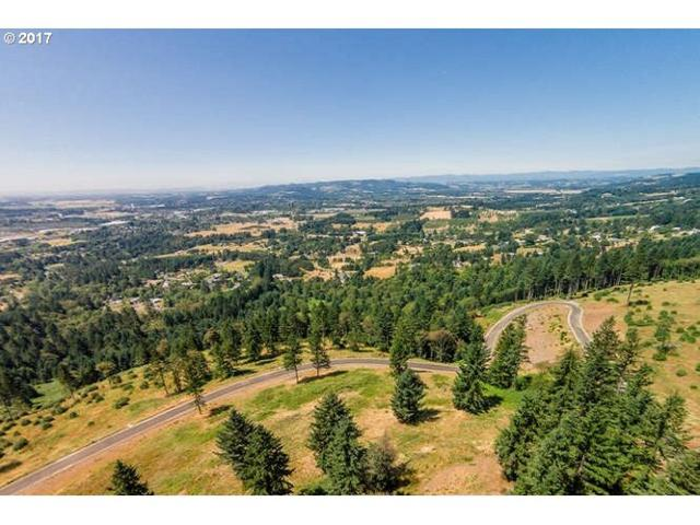 30540 NE Bell Rd #3, Newberg, OR 97132 (MLS #17359388) :: Next Home Realty Connection