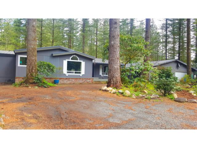 30606 NE 271ST St, Yacolt, WA 98675 (MLS #17365043) :: The Dale Chumbley Group