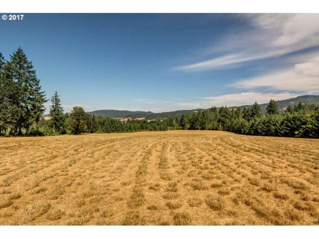 0 NE Flett Rd, Gaston, OR 97119 (MLS #17372320) :: Hatch Homes Group