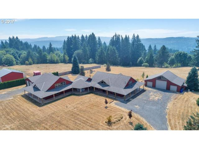 20525 S Bluebird Ln, Estacada, OR 97023 (MLS #17386072) :: Matin Real Estate