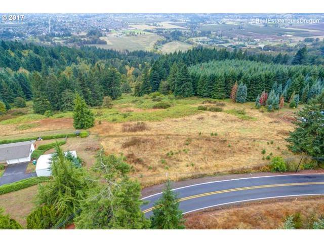 0 Hillsboro Hwy, Newberg, OR 97132 (MLS #17472948) :: Fox Real Estate Group