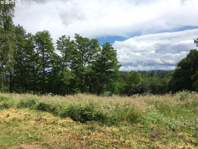 424 Province Dr, Camas, WA 98607 (MLS #17514115) :: Fox Real Estate Group