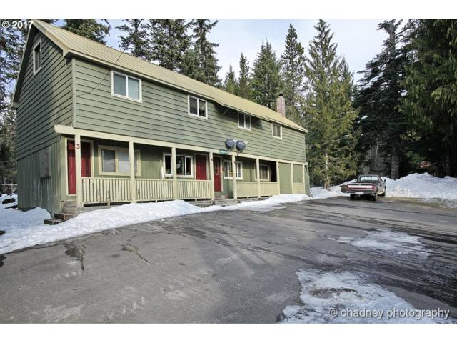 88800 E Lige Ln #3, Government Camp, OR 97028 (MLS #17515636) :: Next Home Realty Connection