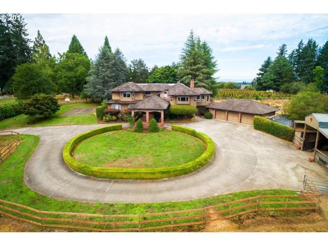 23177 SW Stafford Rd, Tualatin, OR 97062 (MLS #17531475) :: Matin Real Estate