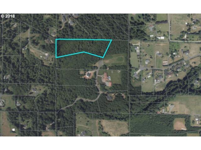 NE 193rd Ct, Brush Prairie, WA 98606 (MLS #17532076) :: The Dale Chumbley Group