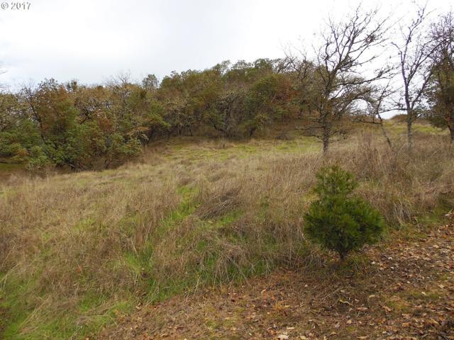0 SE Meadowlark Ave, Myrtle Creek, OR 97457 (MLS #17547853) :: Hatch Homes Group