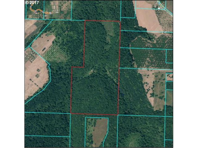 19025 SW Mountain Home Rd, Sherwood, OR 97140 (MLS #17557129) :: Matin Real Estate