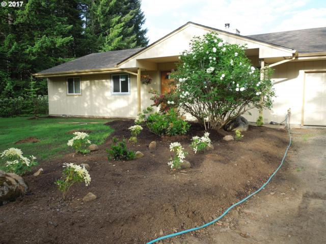27925 NW Green Mountain Rd, Banks, OR 97106 (MLS #17564147) :: Hatch Homes Group