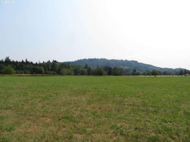 Maki Rd, Skamokawa, WA 98647 (MLS #17571134) :: Harpole Homes Oregon