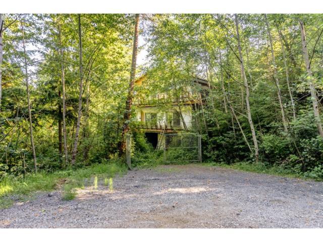 542 E Sr 4 Hwy, Cathlamet, WA 98612 (MLS #17598130) :: Harpole Homes Oregon