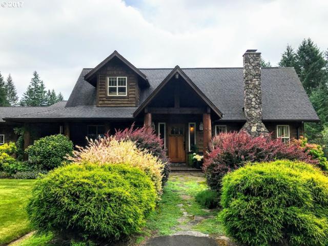 16909 NE 223RD Cir, Battle Ground, WA 98604 (MLS #17615717) :: Matin Real Estate