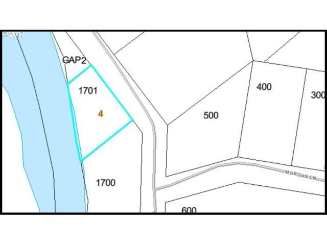 Gronnel Rd, Elsie, OR 97138 (MLS #17643822) :: Beltran Properties at Keller Williams Portland Premiere