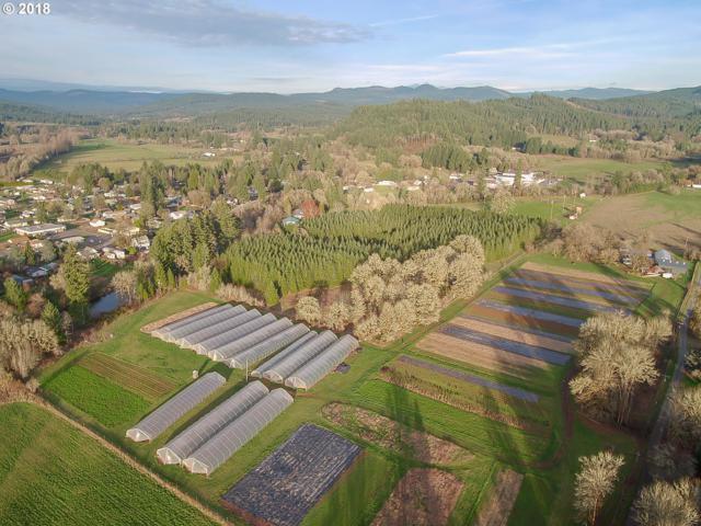 38177 Queens Rd, Marcola, OR 97454 (MLS #18007423) :: Harpole Homes Oregon
