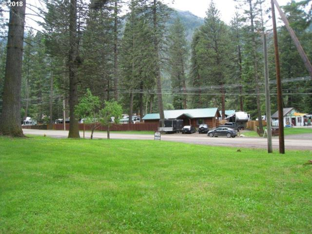 59917 Wallowa Lake Hwy, Wallowa Lake, OR 97846 (MLS #18025293) :: The Dale Chumbley Group