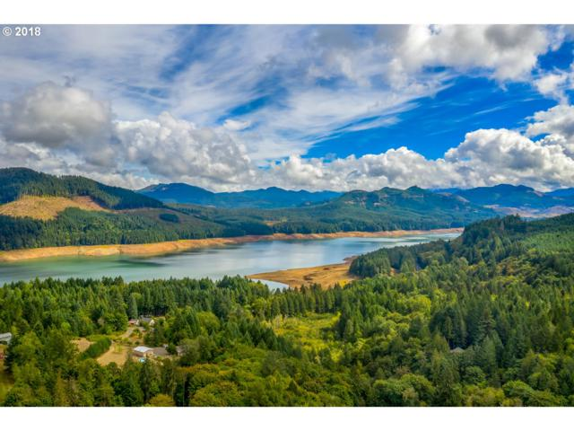 Minnow Creek Rd, Lowell, OR 97452 (MLS #18045650) :: Song Real Estate